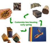 250.12 CUSTOMIZE your own Spring Mason Bee Home