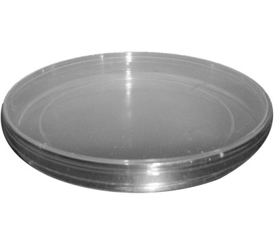933.03SP  Dish for temporary storage of bugs and bees-Used