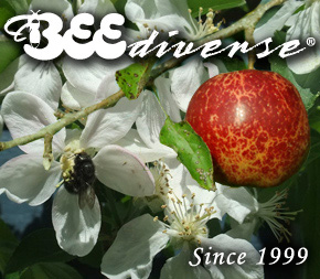 web-logo-2013